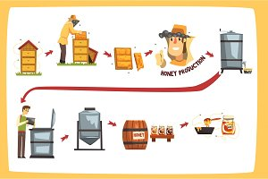Honey production process stages, beekeepers harvesting honey and preserving in a jar cartoon vector Illustrations