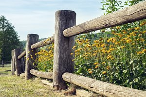Wooden rustic fence.