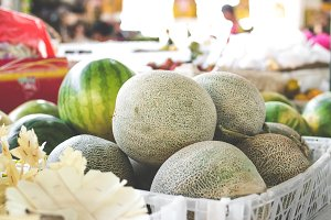Fresh farm melon on organic market in Asia.