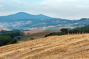 Tuscany summer countryside