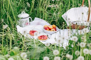 picnic on nature background