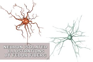 Neuron isolated vector illustration