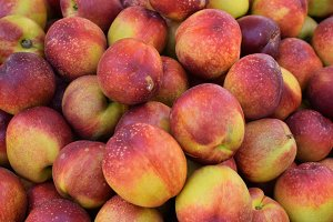 Nectarine Fruit Background