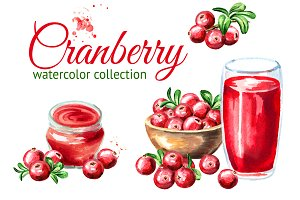 Cranberry. Watercolor collection