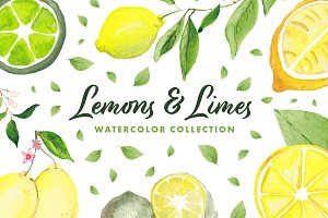 Lemons & Limes Watercolor Collection