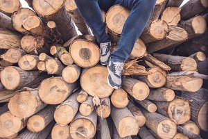 man sitting trunks of cut wood