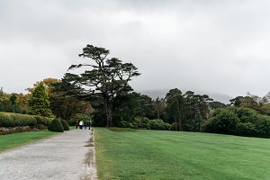 Gardens of Muckross House  in Ireland