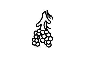 Web line icon. Alveolus black