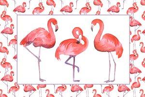 Flamingo (clip art+seamless pattern)