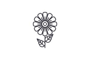 Daisy line icon concept. Daisy flat vector sign, symbol, illustration.