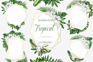 Tropical Geometric Frames Clip Art