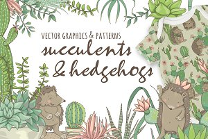 Succulents & Hedgehogs Graphics