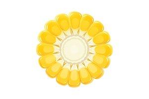 Corn cob. Organic food.