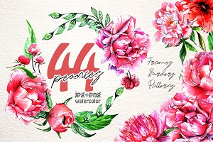 Lovely pink peony PNG watercolor set