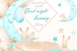 Good nigh bunny