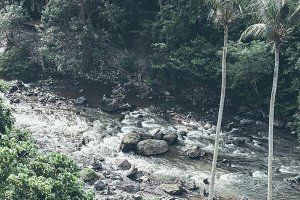 Mountain river water landscape. Wild river in mountains. Mountain wild river water view. Bali island.