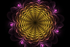 Beautiful abstract fractal flower