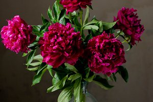 bouquet with dark  peonies