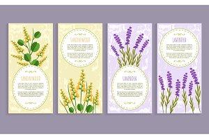 Sandalwood and Lavender Set Vector Illustration