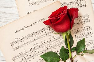 Red rose flower music notes sheet