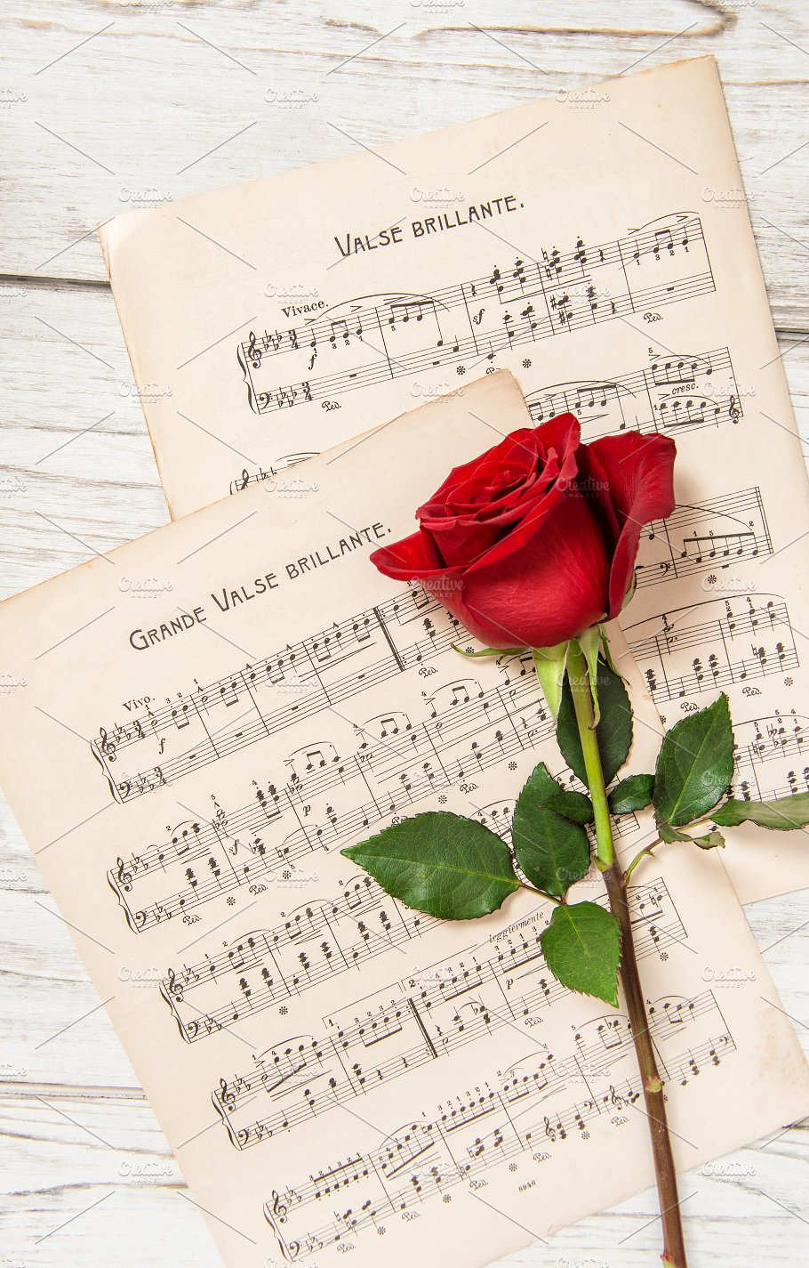 Red Rose Flower Music Notes Sheet Arts Entertainment Photos