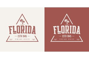 Florida state textured vintage vector t-shirt and apparel design
