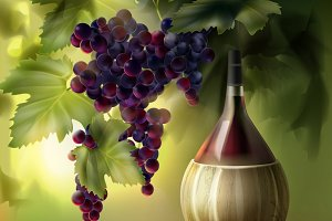 Bottle of wine and bunch of grapes