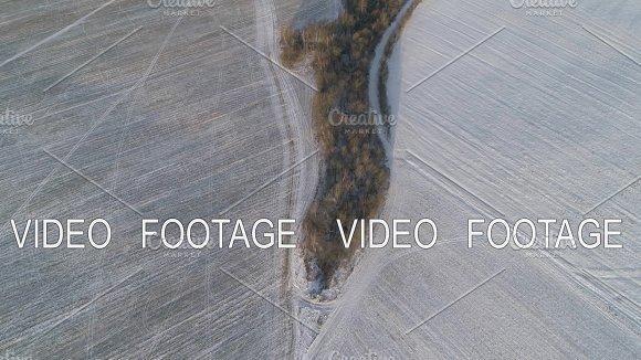 Winter landscape with forest, field. Winter landscape.