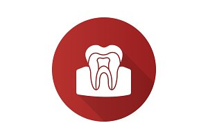 Tooth anatomical structure flat design long shadow glyph icon
