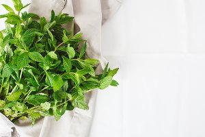 Mint herb on the table