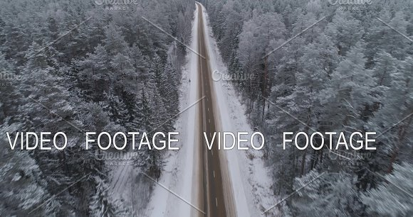 Winter road in the forest. in Graphics
