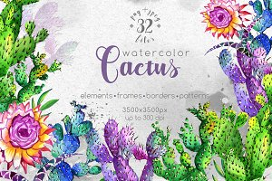 Watercolor cactuses PNG wildflower