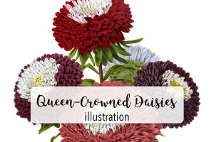 Florals: Queen-Crowned Daisies