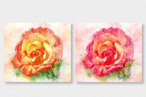 Red & Orange Rose Watercolors