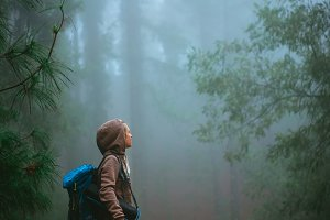 Female traveler wearing hood on the road in the mysterious foggy pine forest. Santo Antao Island, Cape Verde