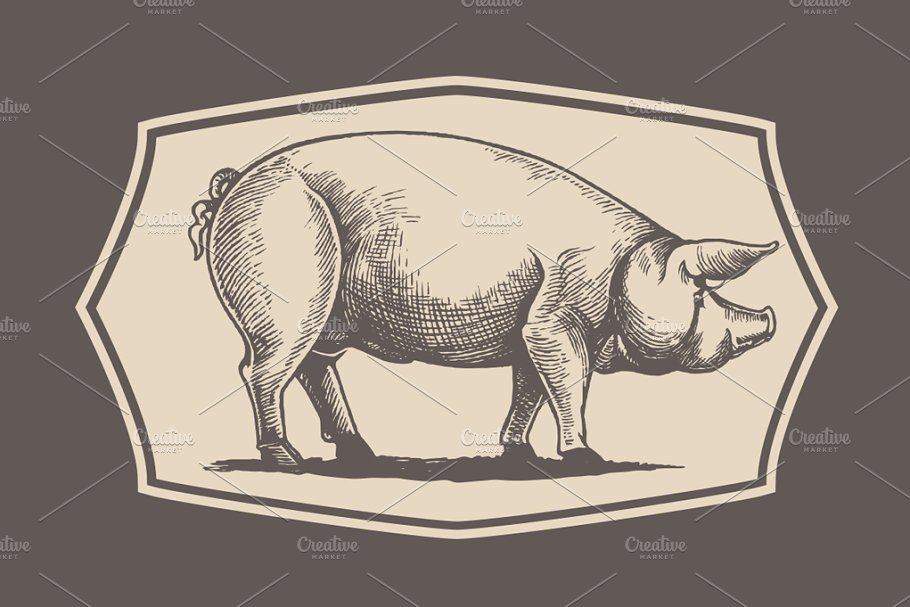 Pigs in graphical style in Illustrations - product preview 3