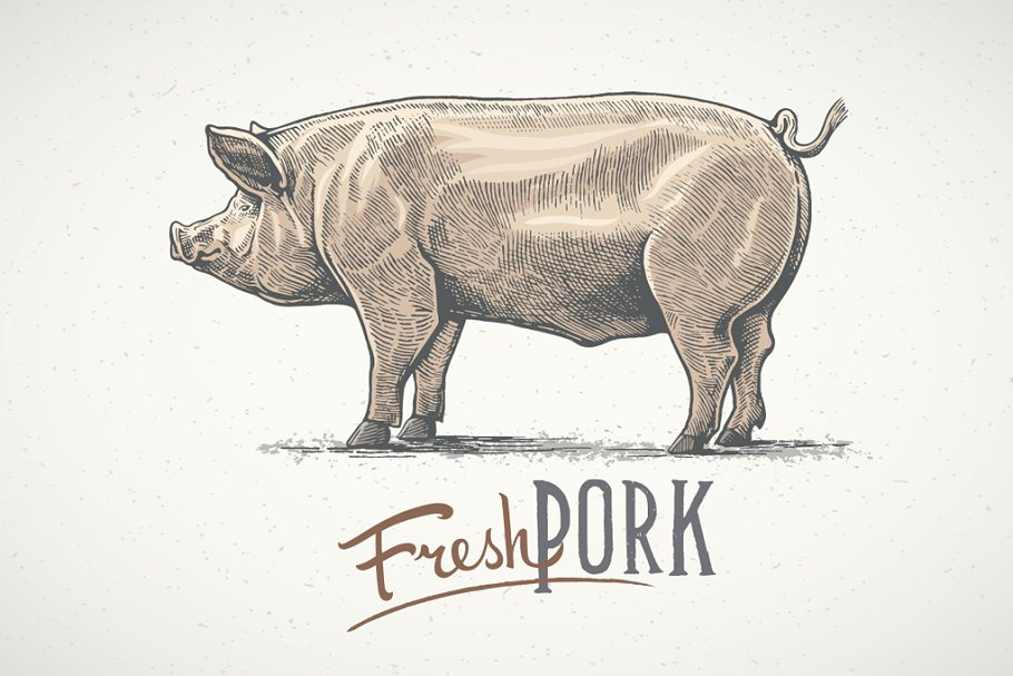 Pigs in graphical style in Illustrations - product preview 8