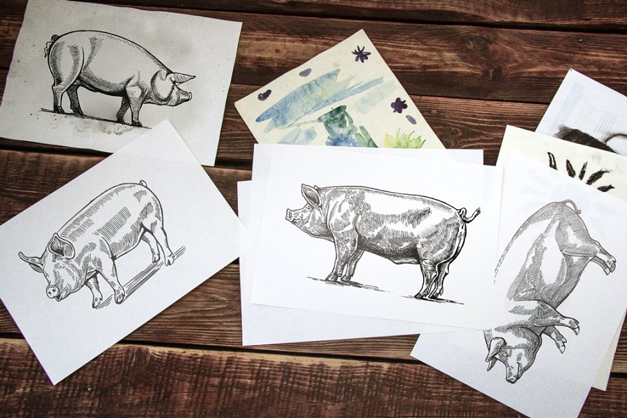 Pigs in graphical style in Illustrations - product preview 10