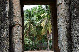 Palm Tree Through Temple Window