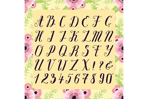 Calligraphic vector font with floral nature numbers ampersand and symbols flower hand drawn alphabet lettering