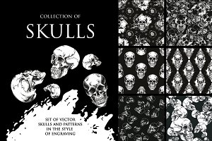 Collection of skulls