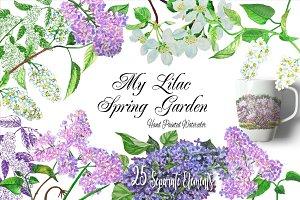 My Lilac Spring Garden