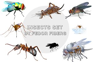 Insects set vector illustration