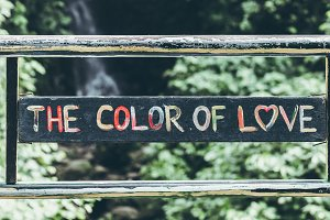 Text the color of love in the jungle of Bali island. Love in the rainforest.