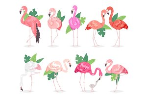 Flamingo vector tropical pink flamingos and exotic bird with palm leaves illustration set of fashion birdie in tropics isolated on white background