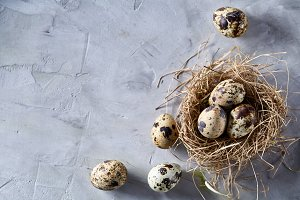 Conceptual still-life with quail eggs in hay nest over grey background, close up, selective focus