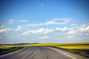 Road in The Future