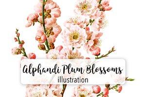 Florals: Alphandi Plum Blossoms