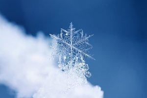 праздничный фон с зимней снежинкой