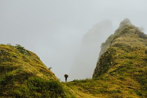 Local farmer carry a bale of hay on head along a sharp misty mountain ridge on Santo Antao Island Cape Verde